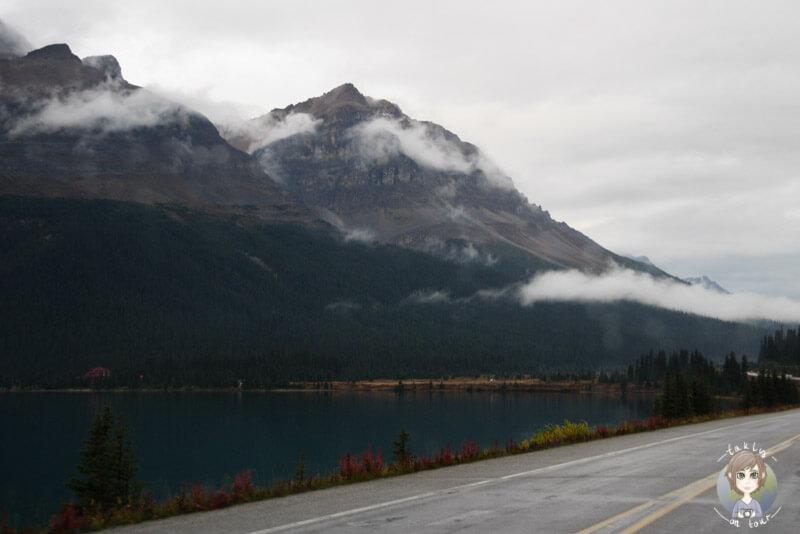 Der Bow Lake im Regen, Kanada