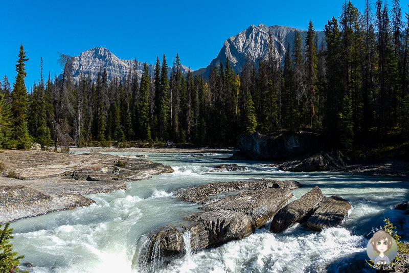Der Kicking Horse River an der Natural Bridge im Yoho National Park, Kanada