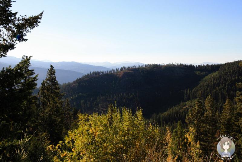 Die Natur im Manning Provincial Park (2)