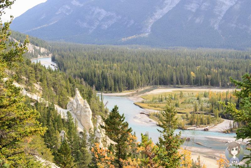 Ein toller Viewpoint: Ein Blick auf die Hoodoos von Banff, Kanada