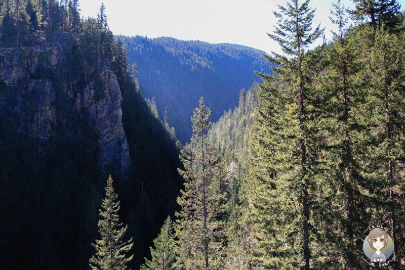 Ein Canyon auf der Strecke Richtung Revelstoke, BC, Kanada