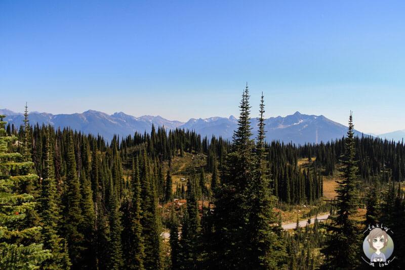 Eine fantastische Aussicht im Mount Revelstoke National Park, Kanada