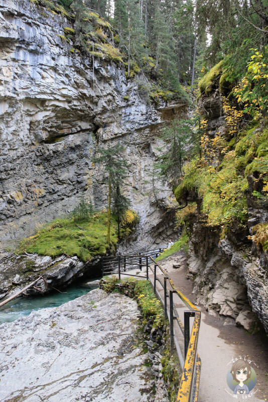 Wanderweg im Johnston Canyon, Kanada