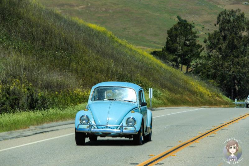 Ein Käfer auf dem Highway 1