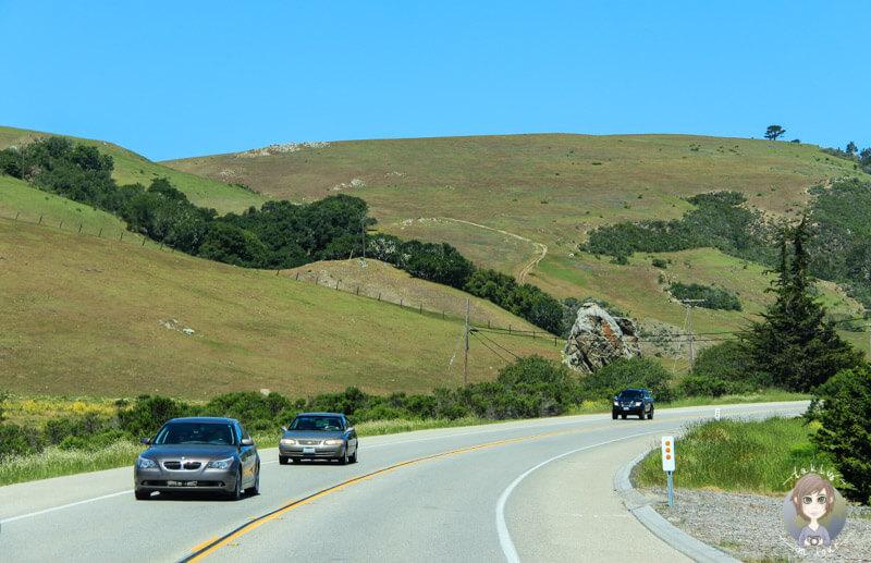 Autofahren auf dem Highway 1