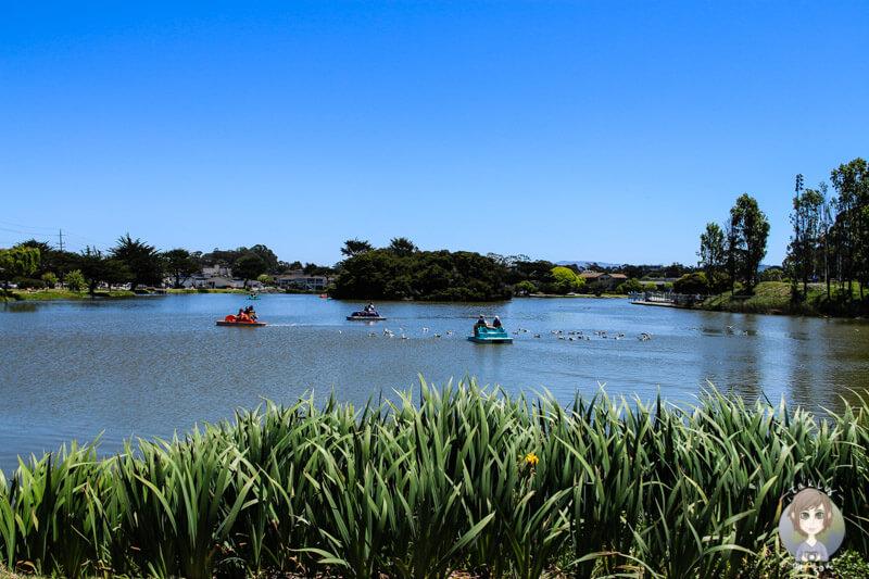 Tretbootfahren am Visitor Center in Monterey