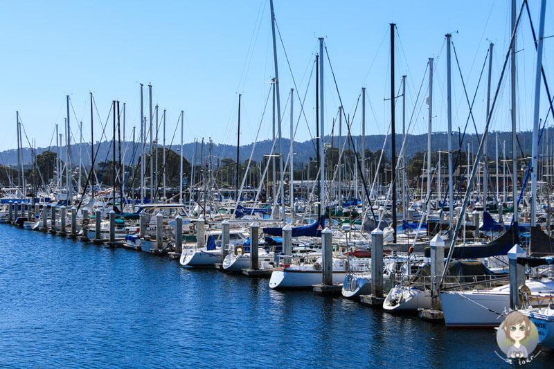 Boote im Hafen von Monterey
