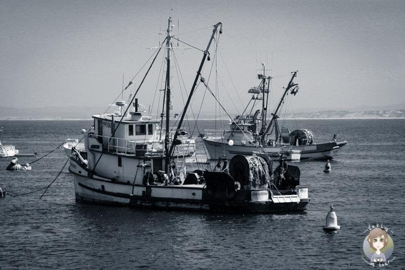 Monterey, Kalifornien (8)