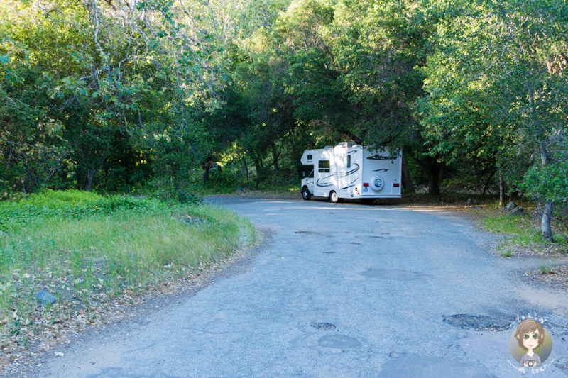 Pfeiffer Big Sur Campgrounds (1)