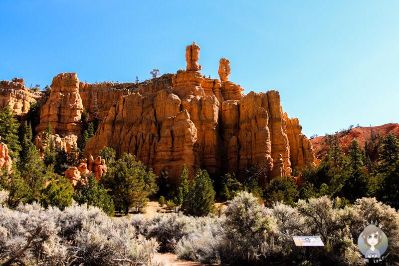 Blick auf die Felsen im Red Canyon