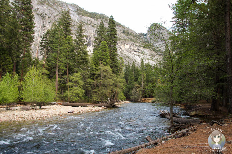 Fluss im El Capitan Yosemite Nationalpark