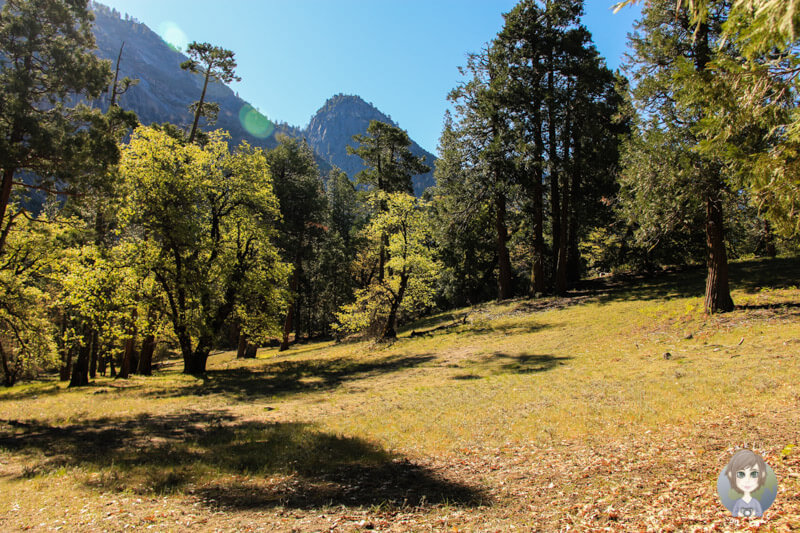 Landschaft auf der Wanderung zum Mirror Lake