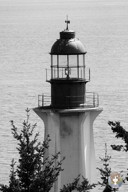 Lighthouse Park, Vancouver (8)