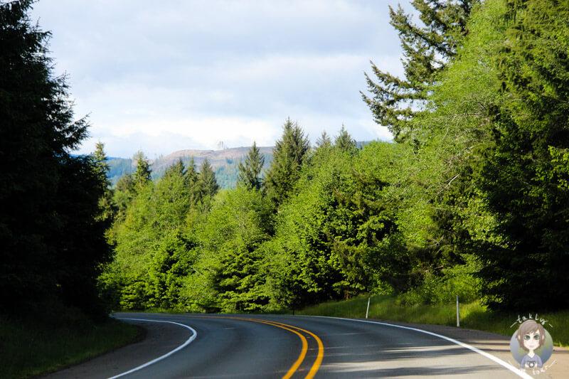 Fahrt durch die Natur in Washington State