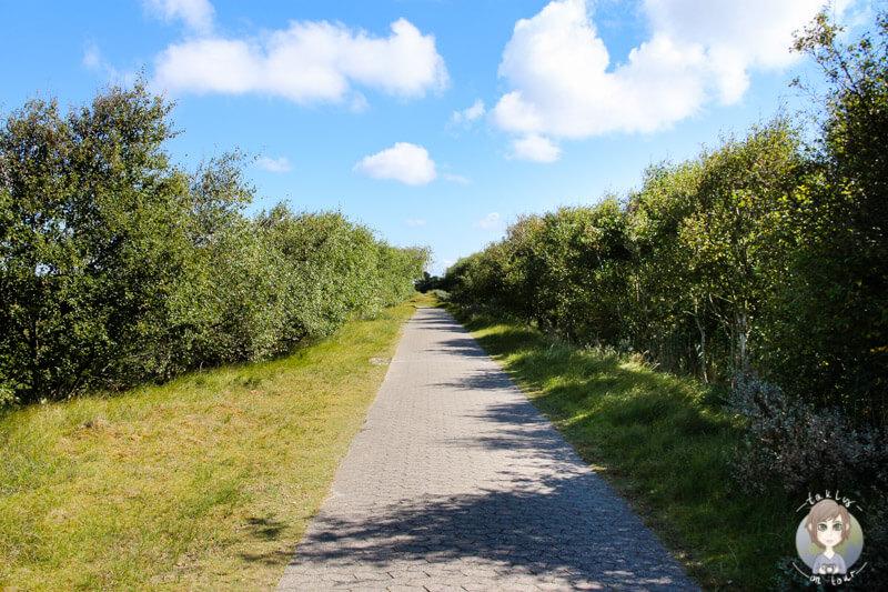 Norderney ist ein Paradies zum Wandern