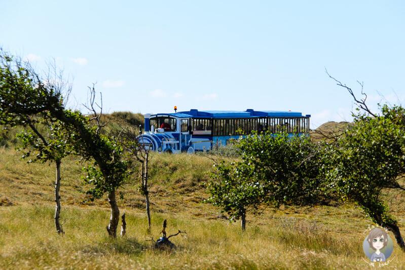 Mit der Bimmelbahn über die Insel Norderney