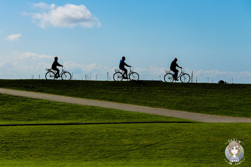 Norderney eignet sich wunderbar für eine Fahrradtour