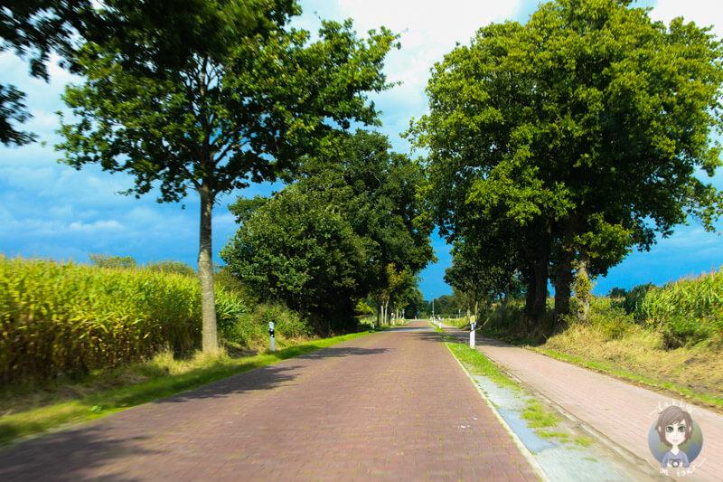 Entspanntes Fahren durch die Region Aurich, Ostfriesland