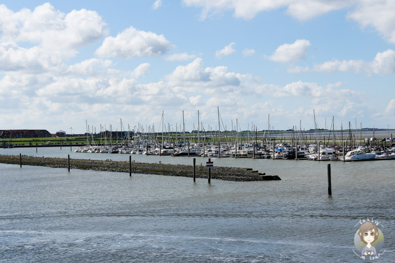 Der kleine Hafen von Norddeich