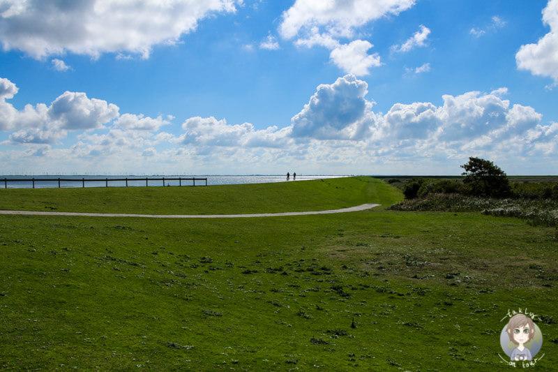 Norderney ist ein wunderschönes Naturparadies