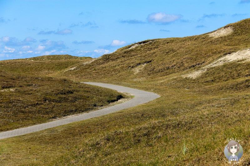 Spaziergang durch die Dünen von Norderney