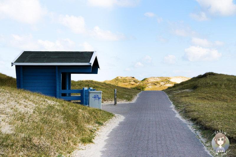 Spaziergang über die Insel Norderney