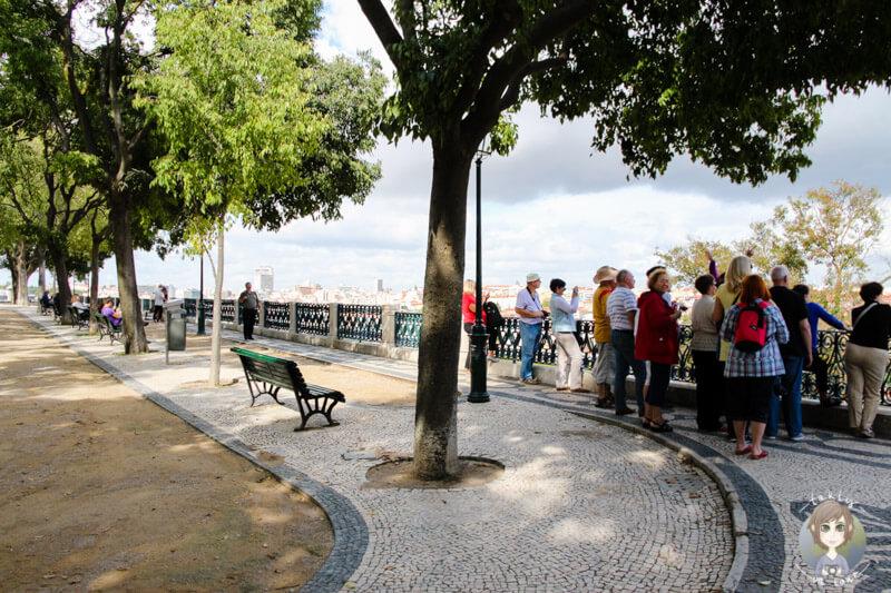 An dem Miradouro São Pedro de Alcântara in Lissabon
