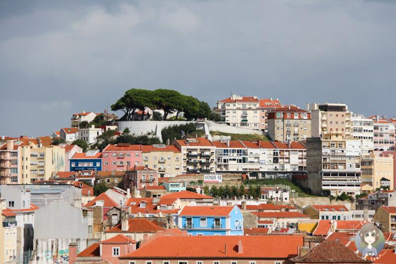 Aussicht auf Graça vom Aussichtspunkt Miradouro São Pedro de Alcântara im Bairro Alto