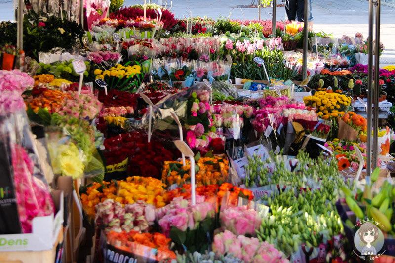 blumenmarkt-auf-dem-groenplaats-antwerpen