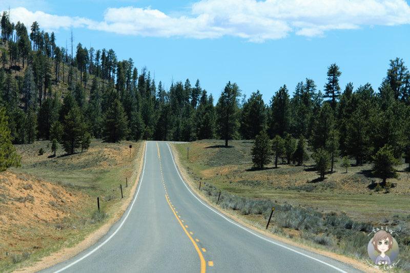 Fahrt durch den Bryce National Park