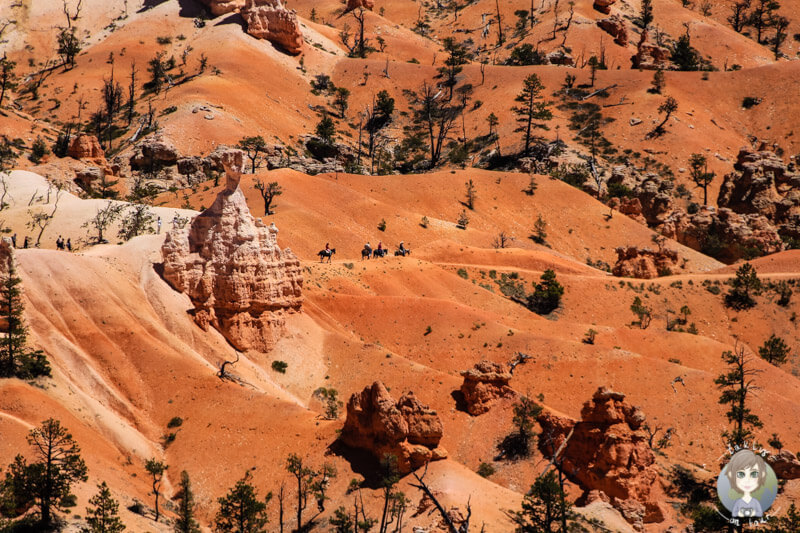 Reiter im Bryce Canyon National Park