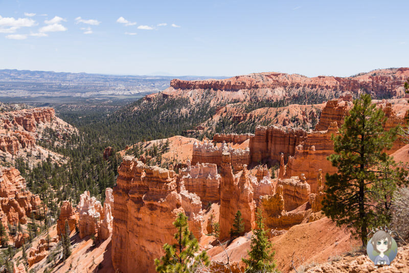 Blick in den Bryce Canyon National Park