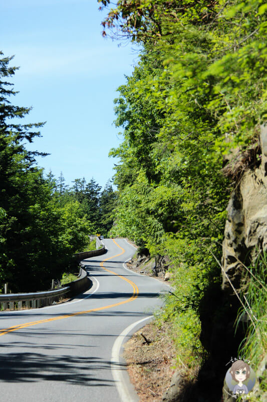 Chuckanut-Scenic-Drive, Washington (6)