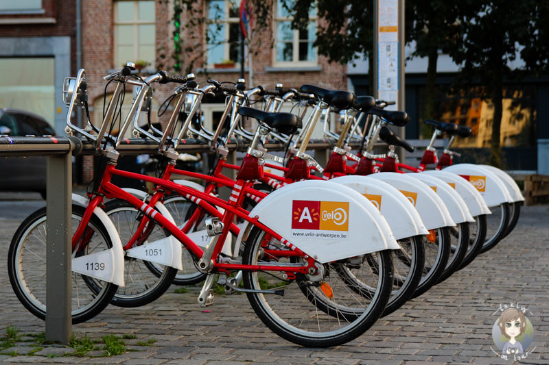 Fahrradverleih in Antwerpen, Citybike