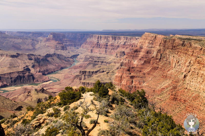 Desert Viewpoint - Grand Canyon Nationalpark