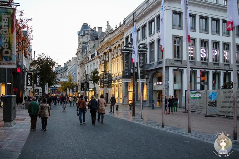 die-einkaufsstrasse-meir-in-der-innenstadt-von-antwerpen
