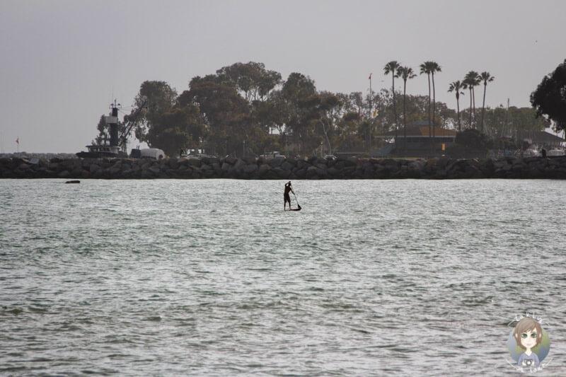 Standup Paddeling am Doheny Beach, CA