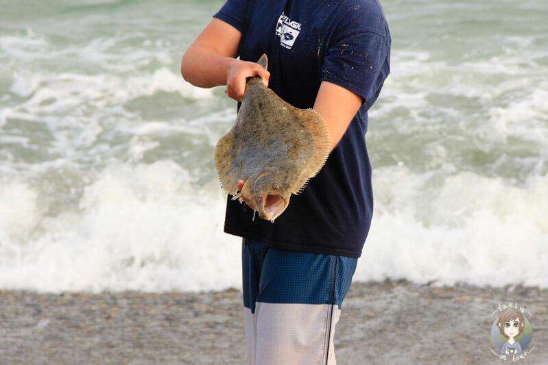 Fischfang am Doheny Beach