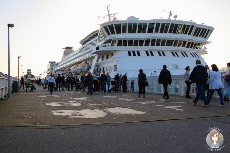 Kreuzfahrtschiff in Antwerpen