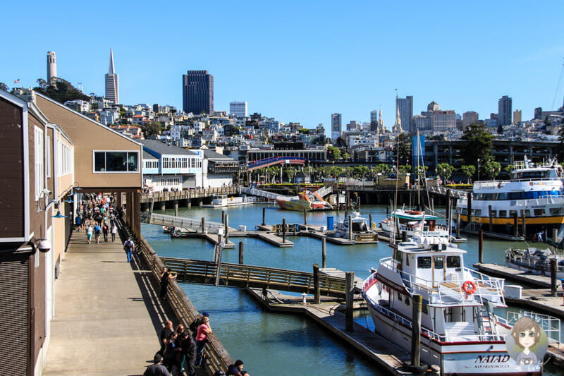 Fishermans Wharf San Francisco (2)