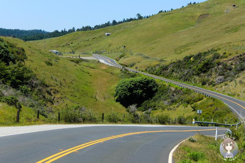 Highway 1 bis Mendocino (1)