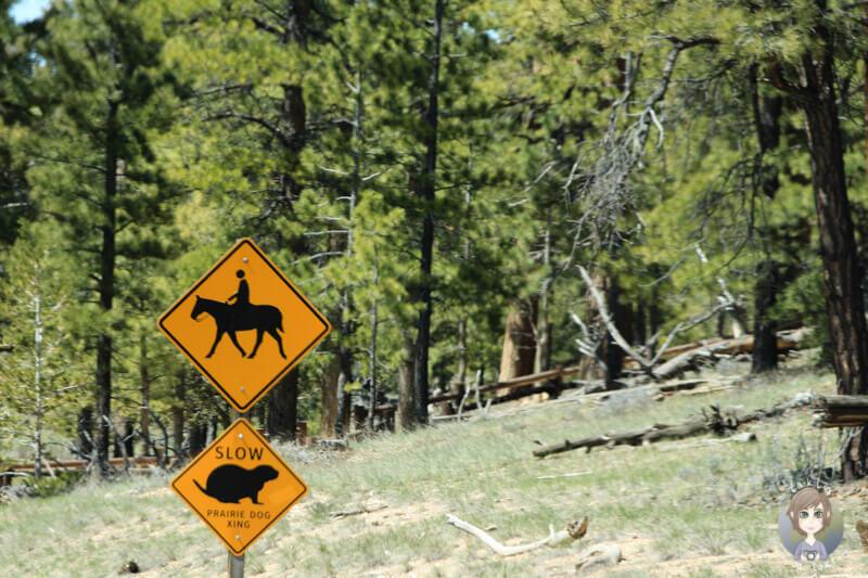 Verkehrszeichen im Bryce Canyon Nationalpark