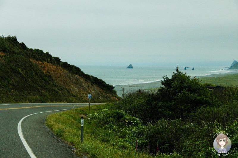 Küstenstraße in Kalifornien (1)