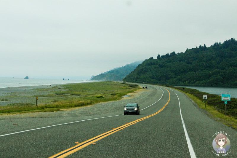 Fahrt an der Küste entlang, auf dem Highway 101