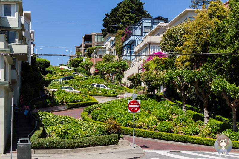 Lombard Street San Francisco (1)