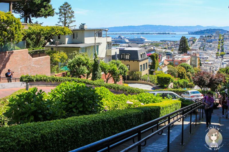 Lombard Street San Francisco (2)
