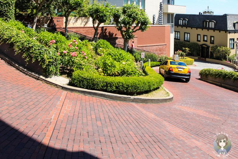 Lombard Street San Francisco (3)