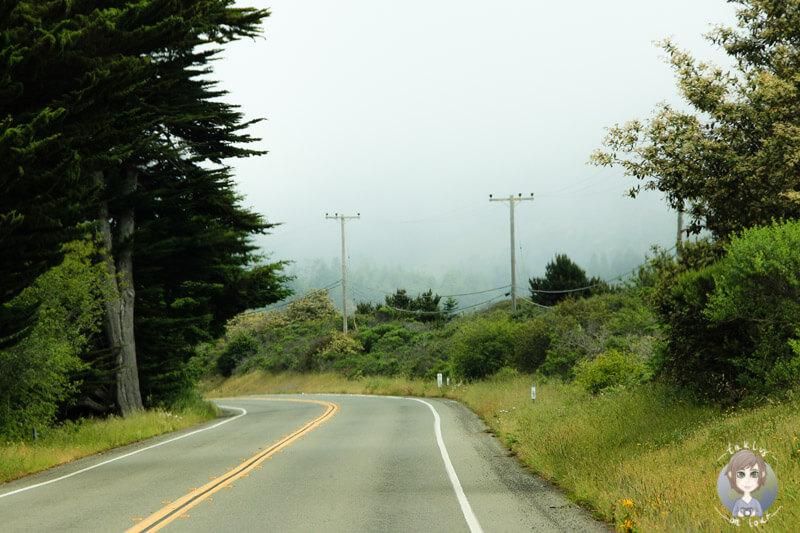 Norden von Kalifornien (2)