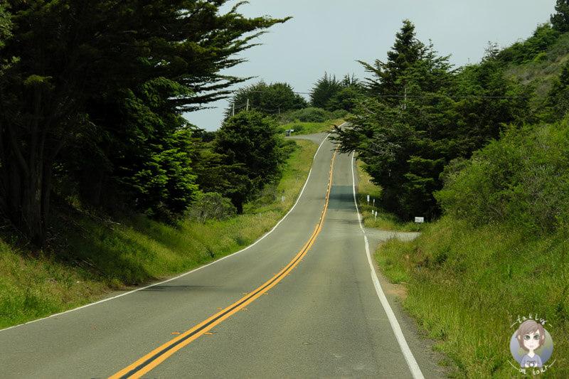 entlang des Highway 101 in Kalifornien