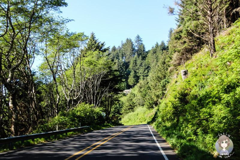 Fahrt durch Oregon